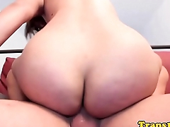 Classy tranny analfucked for topping